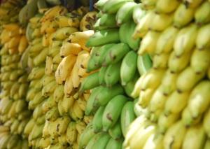 bananas-691856